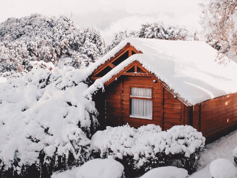casa de madera a medida