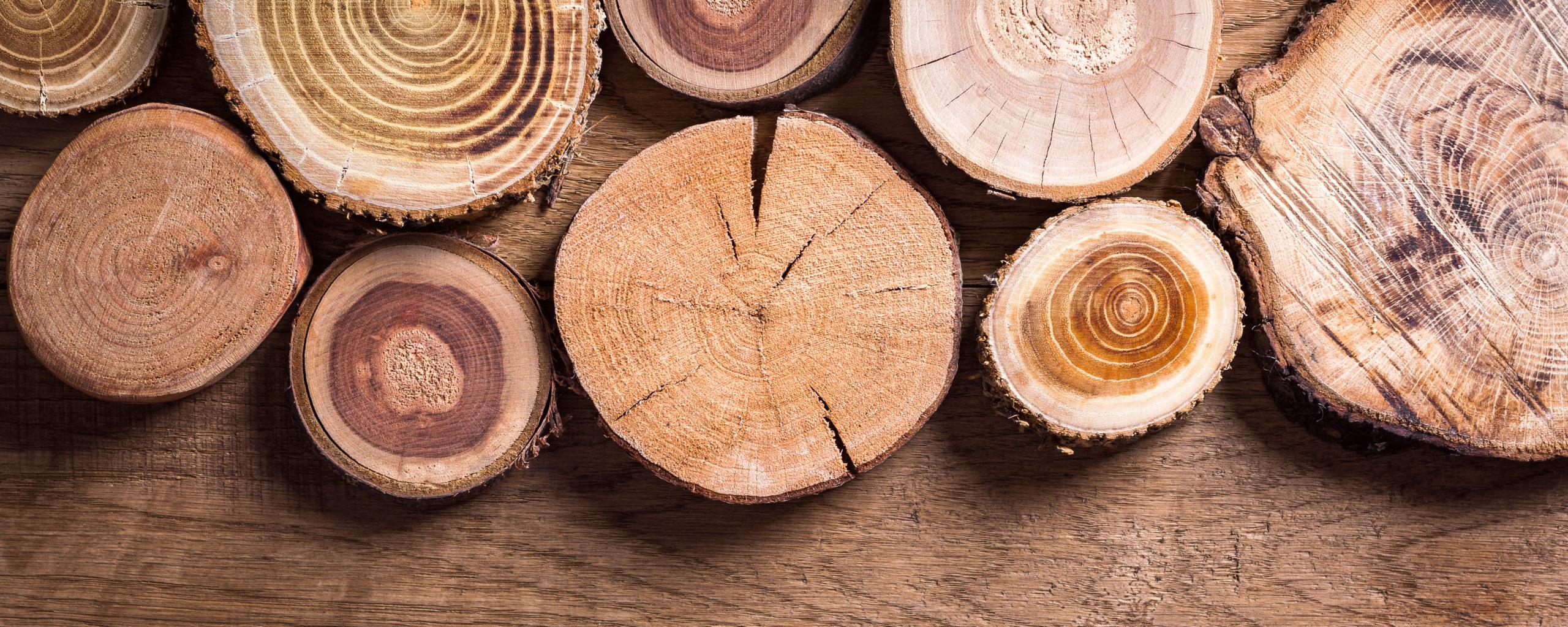 Ejemplo de diferentes tipos de madera.